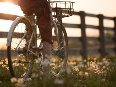Biking / Hiking
